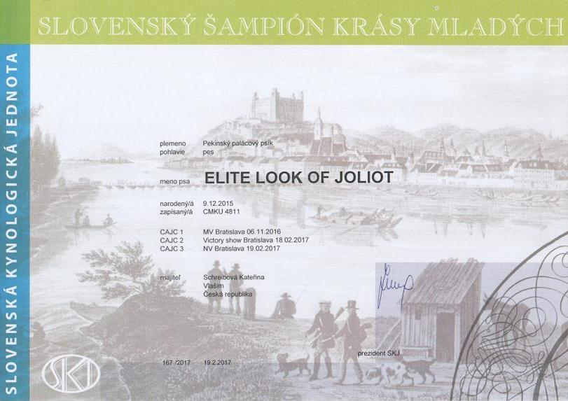 Junior Champion Slovakia - ELITE LOOK OF Joliot