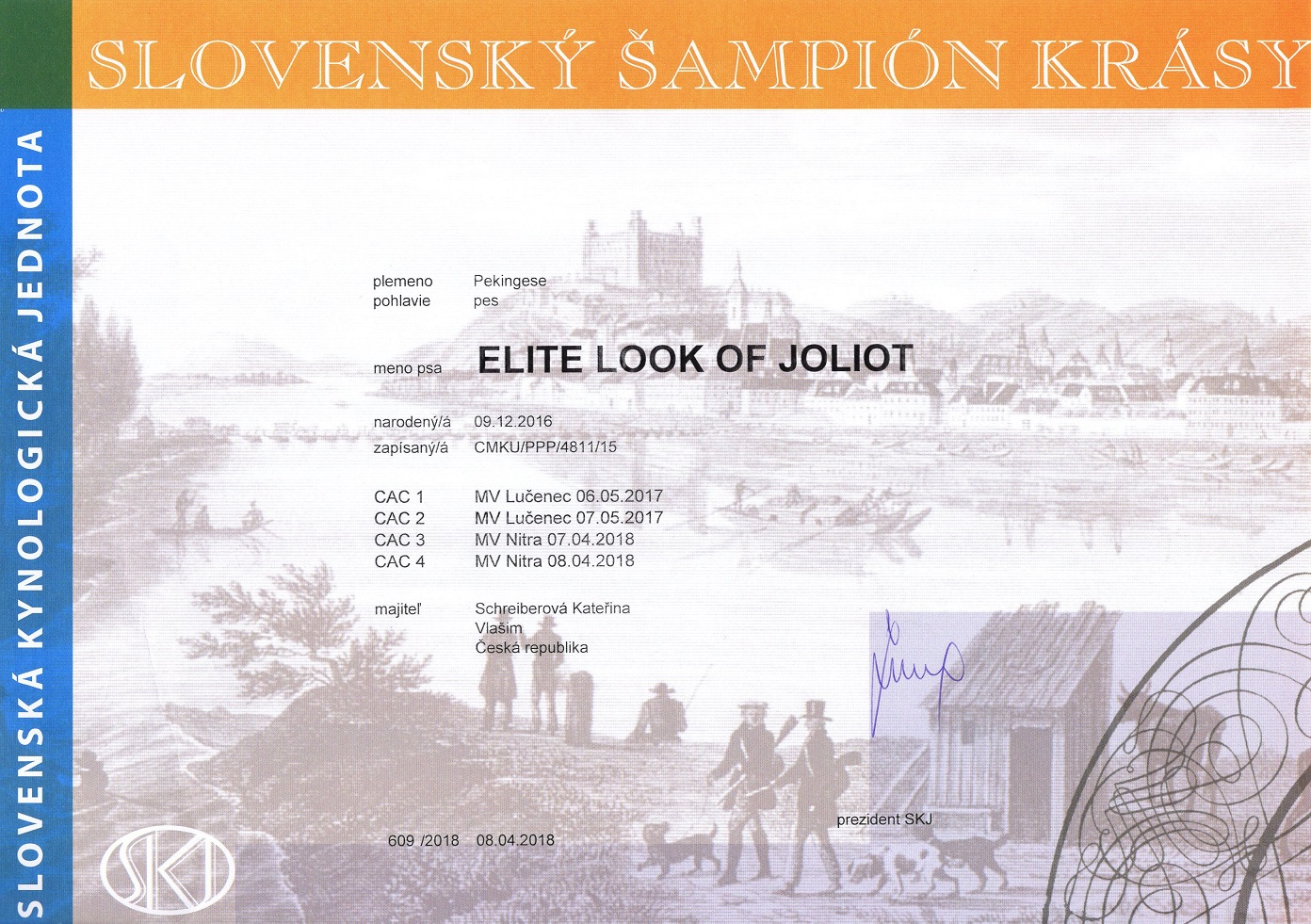 Champion Slovakia - ELITE LOOK OF Joliot